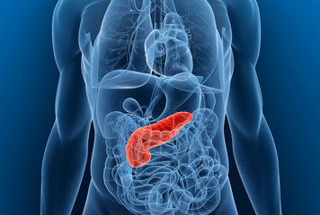 Pancreatic cancer could be the most deadly cancer by 2030