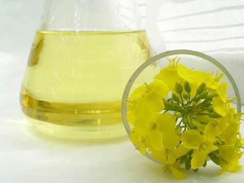 Vitamin E in canola and other oils hurts lungs